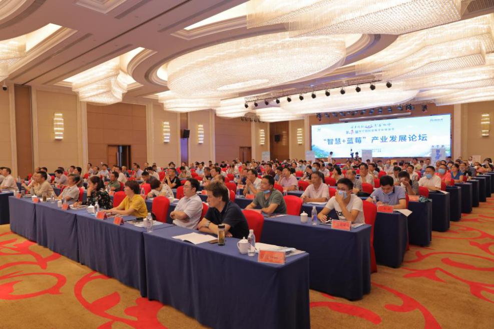 """第四届""""智慧+蓝莓""""产业发展论坛在安庆怀宁举行"""